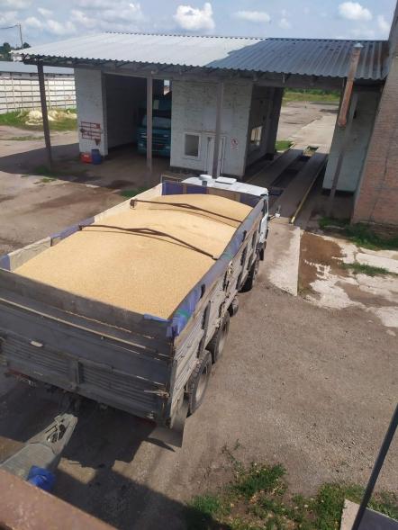 Продовжуємо приймати зернові та запрошуємо до співпраці!